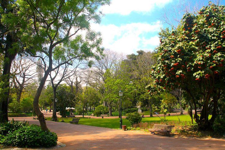 motivos para morar em portugal parque da estrela